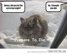 Deathcat