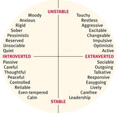 Useful Vocabulary  to Describe Personality