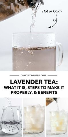 Lavender tea is a classic and staple tea drink in the tea-drinking world. It has amazing benefits as a herbal tea and you can easily make and enjoy a cup with the proper steps. Learn all about lavender tea in this guide; click to continue!