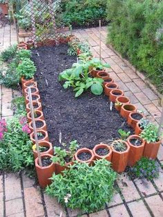Garden area using terra cotta pipes for border, and planting herbs in those, pretty clever