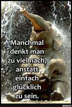 Sometimes that's how it is - Trend Resiliance Quotes 2020 Funny Quotes, Life Quotes, German Quotes, Famous Love Quotes, Susa, Facebook Humor, Man Humor, True Words, Happy Thoughts