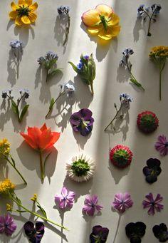 Flowers My Works, Flowers, Plants, Jewelry, Jewlery, Jewerly, Schmuck, Jewels, Plant