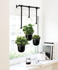 Hanging Plants Outdoor, Hanging Pots, Window Hanging, Indoor Plants, Potted Plants, Window Sill, Window Planters, Concrete Planters, Inside Plants