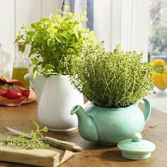 33 Favorite Diy Teapot Garden Decoration Ideas To Try Asap - If you want to spruce up your garden add some variety to those plain old garden pots then consider adding a garden theme to your outdoor decor. Herb Garden, Garden Pots, Succulents Garden, Teapot Crafts, Decoration Plante, Herb Planters, Hanging Planters, Inside Plants, Deco Originale