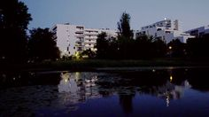 Apartamenty Saska nad Jeziorem - Dom Development
