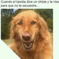 #funny #chistosos #humor