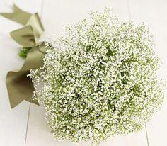 Your Breathtaking Baby's Breath Bouquet