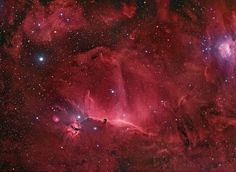 The famous Horsehead Nebula in Orion is not alone. A deep exposure shows that the dark familiar shaped indentation, visible just below center, is part of a vast complex of absorbing dust and glowing gas. To bring out details of the Horsehead's pasture, amateur astronomers at the Star Shadow Remote Observatory in New Mexico, USA fixed a small telescope on the region for over seven hours filtering out all but a very specific color of red light emitted by hydrogen.