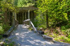 Hidden History - Ghost Town Hikes - WA Trails - Wellington Ghost Town