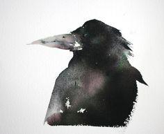 Crows Ravens Rooks:  #Rook, Kate Osborne.