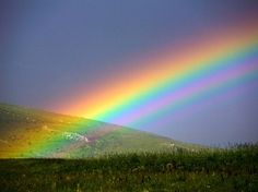 Rainbow-A covenant from God that he would never again destroy wickedness by means of a flood.