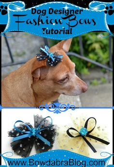 Tulle Boutique Dog Bow for Small Dogs