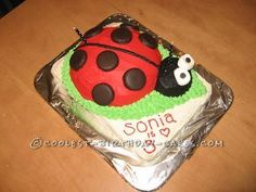 Coolest Ladybug Birthday Cake... This website is the Pinterest of homemade birthday cakes