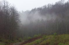 morning mist - eastern Kentucky. Photo by Hannah H.