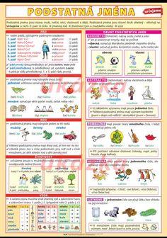 Podstatná jména URČUJEME - nástěnný obraz XL /70x100cm/ | ALBRA - Prodej a distribuce učebnic