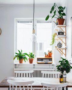 Minimal but homey dining room vibe