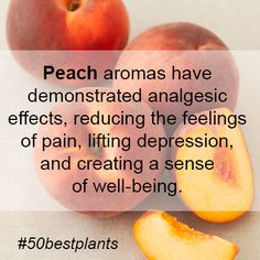 Did you know this about #Peaches?