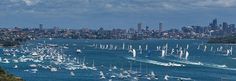 The crew has no time for rest at the Rolex Sydney Hobart Yacht Race. Discover more about Rolex and yachting on the Official Rolex Website. Rolex, Sydney, New York Skyline, Sailing, Australia, World, Places, Travel, Yachts
