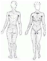 Image result for lymphatic drainage