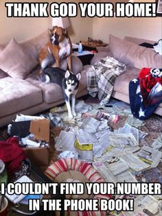 """Thank God your Home!  We couldn't find your number in the phone book!"" ~ Dog Shaming shame - Boxer & Husky - we've been trying to call you for hours - Honest :)"