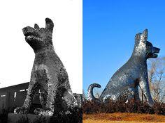 Denver, Animal Shelter, Dog, Statue