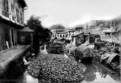 Coconut raft in Pasig River Filipino Architecture, Philippine Architecture, Philippines Culture, Manila Philippines, Old Pictures, Old Photos, Vintage Pictures, President Of The Philippines, The Spanish American War