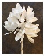 Foam flower white pinterest living rooms and room ff1610 white foam flower 36 mightylinksfo