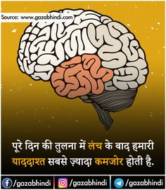 Interesting Health Facts, Interesting Facts About World, Mind Power Quotes, Good Thoughts Quotes, Gernal Knowledge, Knowledge Quotes, General Knowledge For Kids, Human Body Facts, Amazing Science Facts