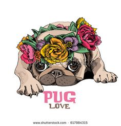 Pug Puppy in a bright floral head wreath. Pug Puppy in a bright floral head wreath. The Pug, Perro Shih Tzu, Amor Pug, Pug Puppies For Sale, Animals And Pets, Cute Animals, Pug Tattoo, Pug Art, Pug Love