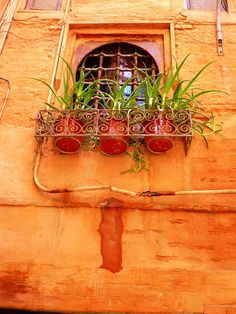Colors from Morocco