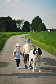 Kids and dog. Landseer.