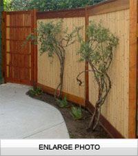 Bamboo fencing - for Whitney..... *SQUUUEEEE* love it!!!