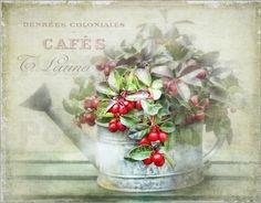 """Bild von Lizzy Pe - """"red berries"""""""