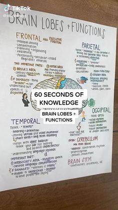 Psychology Notes, Educational Psychology, Nursing Students, Nursing Student Quotes, Medical Students, Nursing School Notes, Medical School, Nursing Study Tips, Medicine Notes
