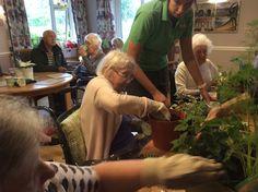Felt & gardening workshops at Riversway - Springhill Care Group Lancashire