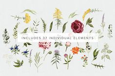 San Clemente Wedding Florals + Font by Jen Wagner Co on @creativemarket