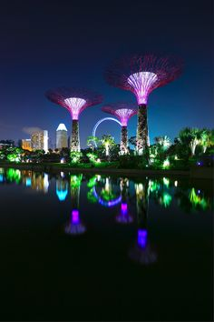 The Super Trees, Singapore - innovative 'living' trees with various life enhancing functions