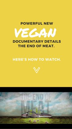 An incredible new vegan documentary—The End of Meat—highlights the hidden impact of our meat-heavy diets and the growing plant-based movement. Gluten Free Banana Bread, Vegan Gluten Free, Vegan Documentaries, Global Warming Climate Change, Jim Morrison Movie, Tired Of Trying, Why Vegan, Vegan News, Feel Tired