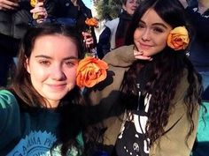 Acacia with a fan