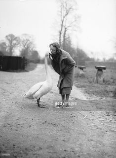 Mrs R N Watson with her pet swan, 'Leila', at home in Chesham, Buckinghamshire.