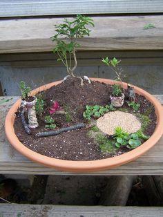 Miniature Fairy Garden   How to Create a Miniature Fairy Garden   Frugal Gardening Momma