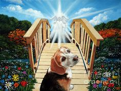 Oil painting of a dog walking over to the other side on the rainbow bridge to a new eternal life. It was a commissioned work that I did for someone whose dog passed away this year. Enjoy the view and have a pleasant day. Dog Passed Away, Heaven Painting, Bridge Painting, Dog Heaven, Crazy Dog Lady, Beagle Dog, Dog Memorial, Rainbow Bridge, Over The Rainbow