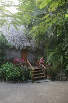 Who wouldn't want to rest their head in a secluded tropical cabana on their dive trips? #SCUBA #Travel