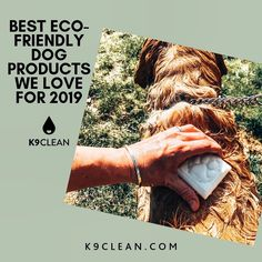 From Dog Poop Bags to Zero Waste Dog Shampoo- this is the perfect must have list!