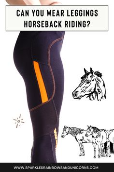 Horseback Riding Tips, Horse Riding Pants, Horse Training Tips, Riding Breeches, Horse Care, Equestrian, I Can, Give It To Me, Horses