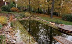 Zahrada uvily vDobřichovicích Garden Bridge, Pergola, Exterior, Outdoor Structures, Ideas, Atelier, Outdoor Pergola, Outdoor Rooms, Thoughts