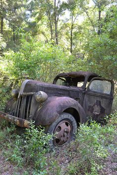 Medart, FL - Car Graveyard by PPJC, via Flickr .#jorgenca