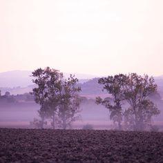 """1,459 mentions J'aime, 27 commentaires - Camille Talks ⚓️🎈 (@camilletalks) sur Instagram: """"La brume matinale 💕Bon pas de ce matin, en plus il pleut des cordes par ici 🌧 J'espère qu'il fait…"""""""