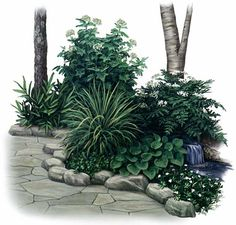 A Garden of Shade-Loving Herbs - with planting plan... yes, there are herbs that can grow in shade!