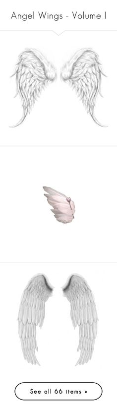 """Angel Wings - Volume I"" by marie-guzik-mcauley ❤ liked on Polyvore featuring wings, fillers, drawings, backgrounds, birds, angels, embellishments, filler, dolls and extra"